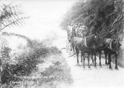 Portrait of an unidentified group near Tikitapu