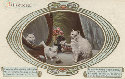 Postcard, Reflections