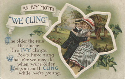 Postcard, An Ivy Motto We Cling