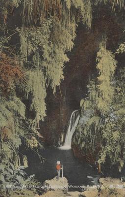 Cave and waterfall above Pipiriki, Wanganui River