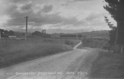 Ormondville-Norsewood Road, Hawke's Bay; Wilsons Real Photograph; Webb, Alice Frances