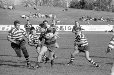 Madison Trophy Rugby Game, Nelson Park, Hastings