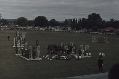 Showday at Tomoana Showgrounds, show jumping