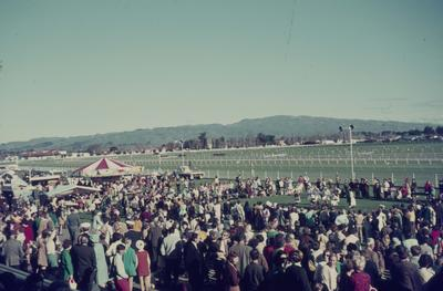 Showday at Tomoana Showgrounds, the crowd