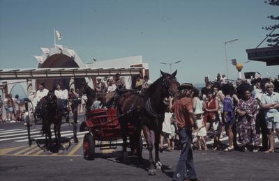 Napier Centennial parade, two horse drawn carriages