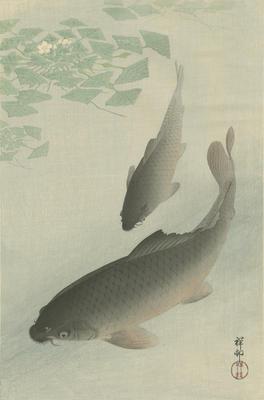 Two Carp and Blooming Water Plants; Ohara, Shōson; Watanabe; 87/39/13
