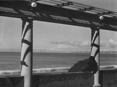 Cape Kidnappers from the Colonnade, Napier