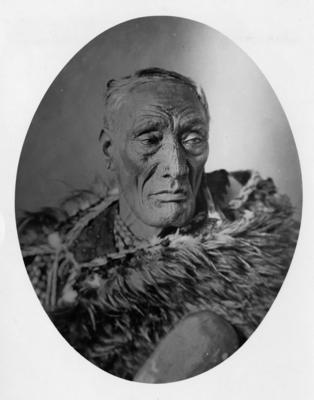 Portrait, unidentified Māori man