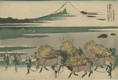 Sunshū, Ono-shinden; Hokusai, Katsushika; Eijudō; 87/41/6