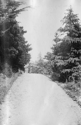 Garden path, Napier; Duncan, Russell