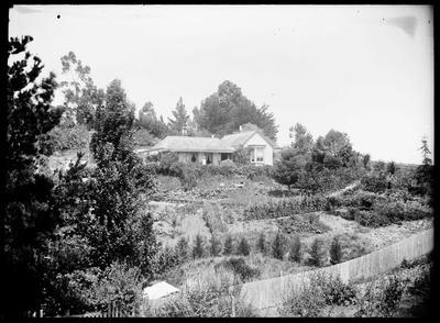 John Ernest Provis's house, George Street, Napier; Duncan, Russell