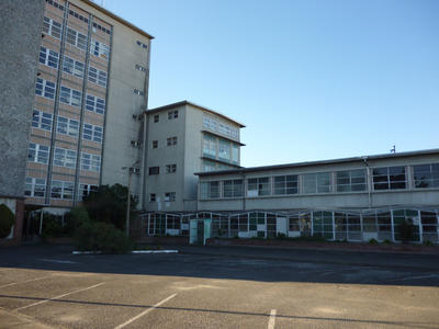 Physical Medicine - Surgical Theatres, Napier Hospital