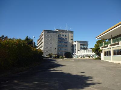 Tower Block, Napier Hospital