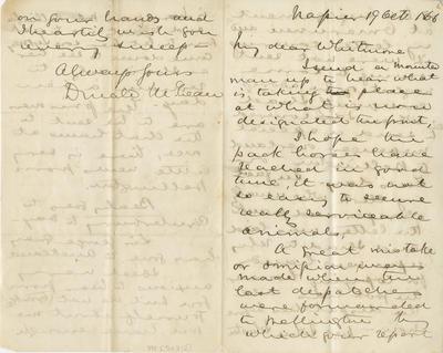Collection of Hawke's Bay Museums Trust, Ruawharo Tā-ū-rangi, [54712]