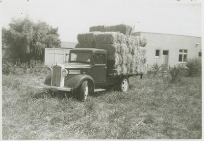 Noel Fraser's truck full of hay, Greenmeadows, Napier