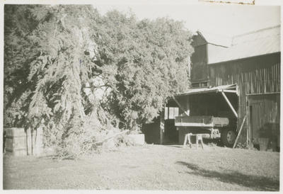 Two-storied stables on Noel Fraser's property, Greenmeadows, Napier