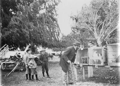 Reverend Anthony Spur Webb examining prize poultry; Crawford, William Fitzgerald
