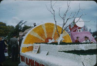 Hastings Blossom Festival, Havelock North Citizens' Association float