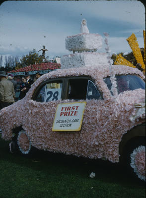 Hastings Blossom Festival, First prize winning Decorated Car float