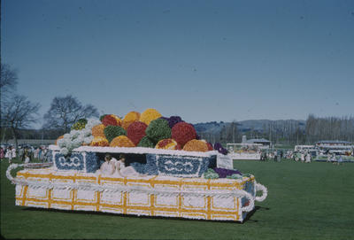 Hastings Blossom Festival, Woolworths float