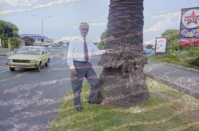 Tony Reid, Napier