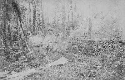 Wood splitting, Seventy Mile Bush near Ormondville; Mariboe, Charles Henry