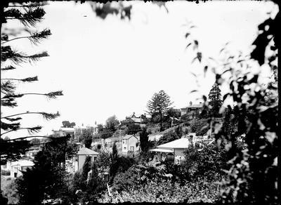 Napier hills; Nelson, David; 2018/19/4