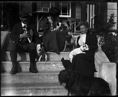 Group with dogs