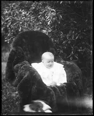 Infant in chair