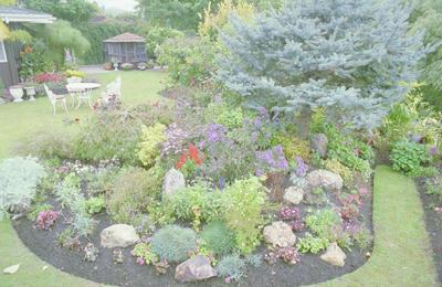 Garden in Taradale