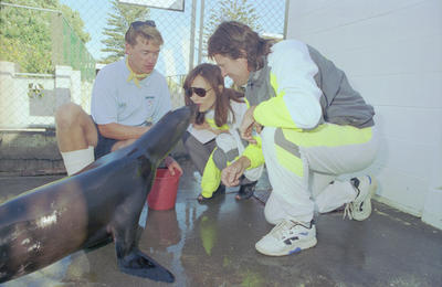 Sea-lion kiss for Auckland actress Dale Stevens