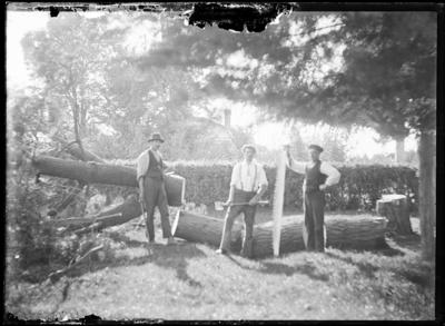 Three woodcutters