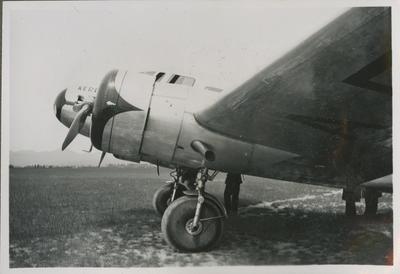 Lockheed Electra ZK-AFE aeroplane Kereru