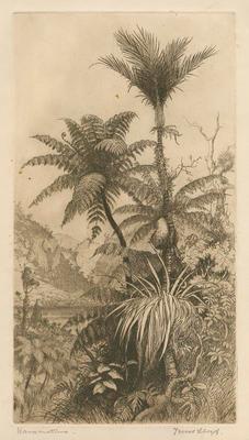 Collection of Hawke's Bay Museums Trust, Ruawharo Tā-ū-rangi, 63/199/5