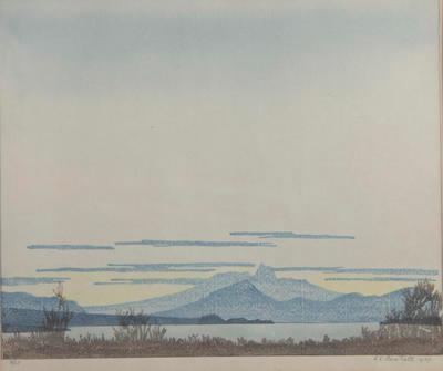 Collection of Hawke's Bay Museums Trust, Ruawharo Tā-ū-rangi, 76/355