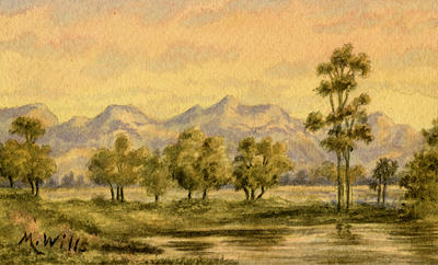 Untitled - landscape of trees and hills