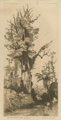 Collection of Hawke's Bay Museums Trust, Ruawharo Tā-ū-rangi, 63/199/11