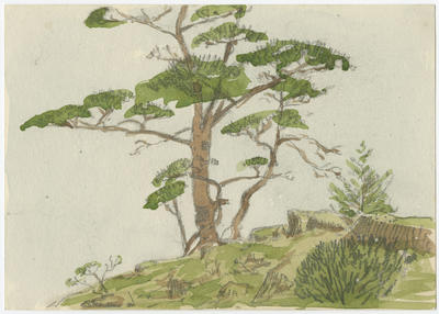 Untitled - tree on a hill