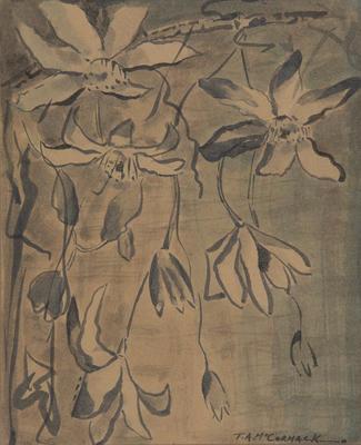 Untitled - Clematis; McCormack, Thomas Arthur; 88/127