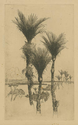 Collection of Hawke's Bay Museums Trust, Ruawharo Tā-ū-rangi, 63/199/2