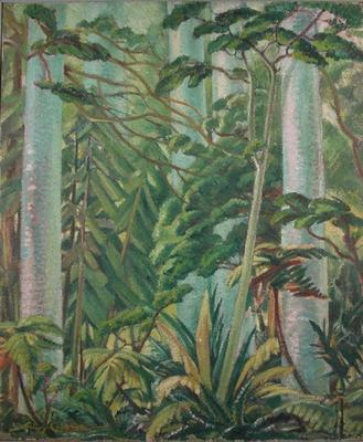 Kauri Forest, Waipoua; Campbell, Janet; 40/19