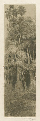 Collection of Hawke's Bay Museums Trust, Ruawharo Tā-ū-rangi, 63/199/3