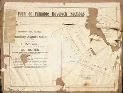 Plan, Valuable Havelock sections for sale; Herald Lithography; Rochfort & Son
