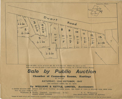 Plan, Te Mata S D; Wattie Ltd Print; Davies, Henry Cornwell