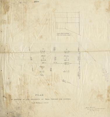 Plan, portion of the property of Thomas Tanner Esq, Karamu