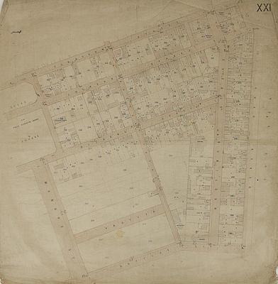 Map, Napier land lots