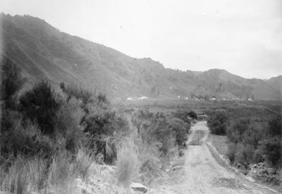 Napier-Taupo Road