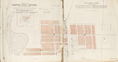 Plan, Pahiatua town sections for sale; Herald Lithography; Beaufort, J W; Hawke's Bay Herald