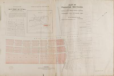 Plan, Pahiatua sections for sale