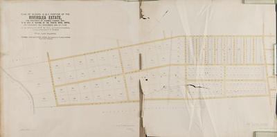 Plan, Riverslea Estate portions for sale; Herald Lithography; Ellison, Henry; Jarman, Alfred